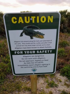 Sign cautioning about alligators