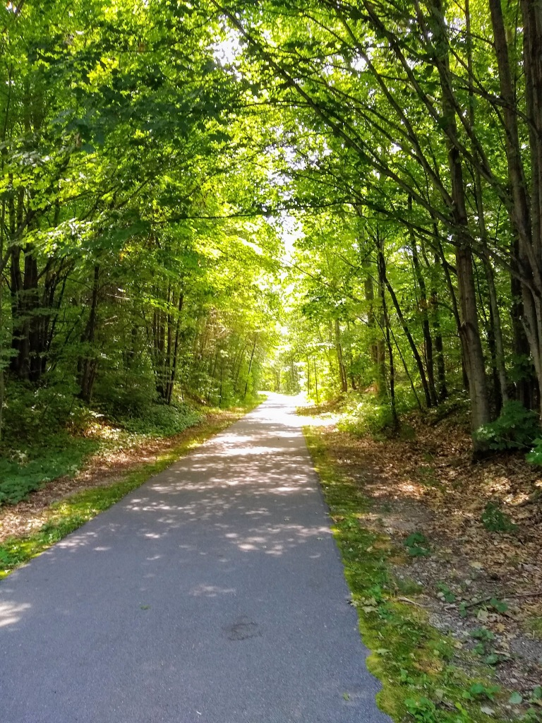 Hart-Montague Trail with trees on both sides.