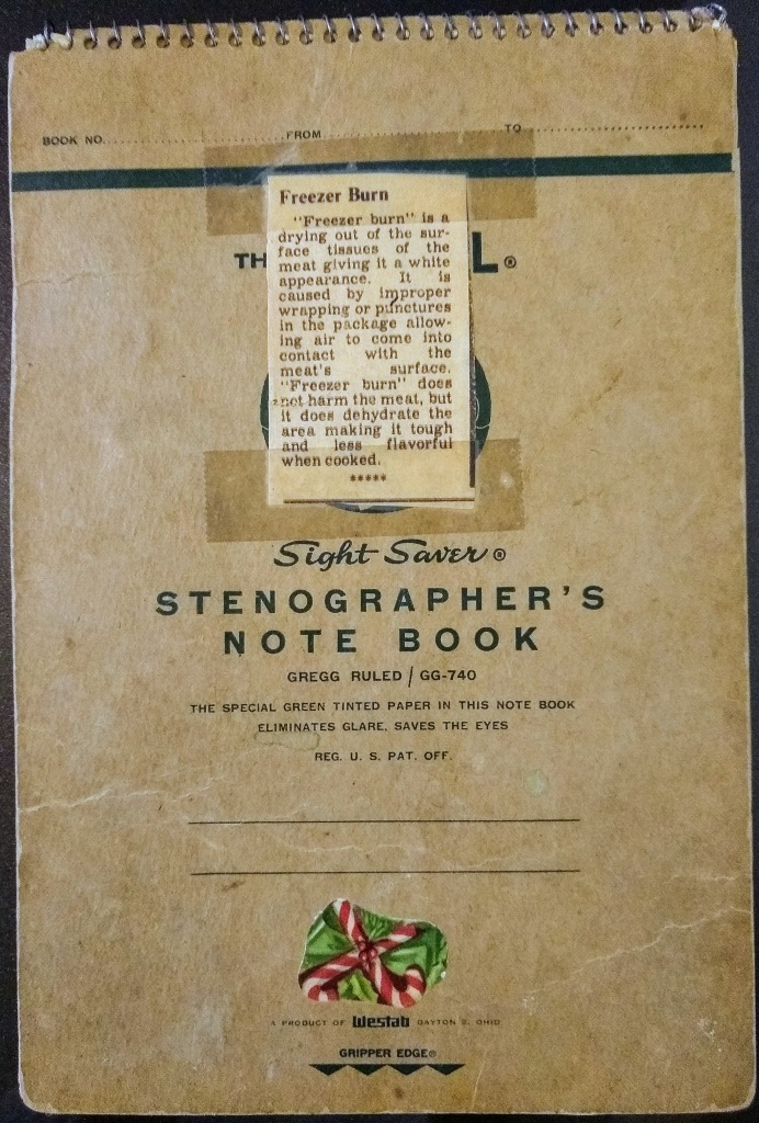 Spiral Stenographer's Notebook