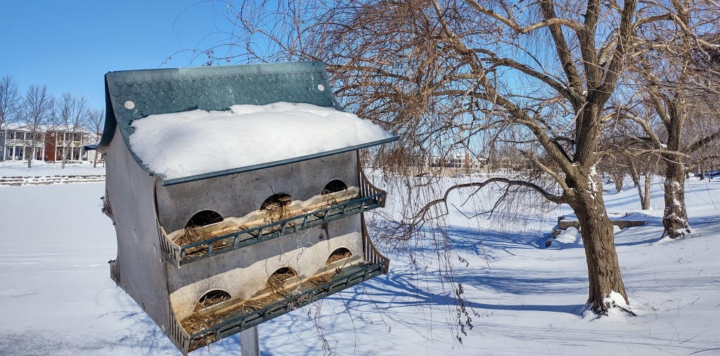 Close up of purple martin house
