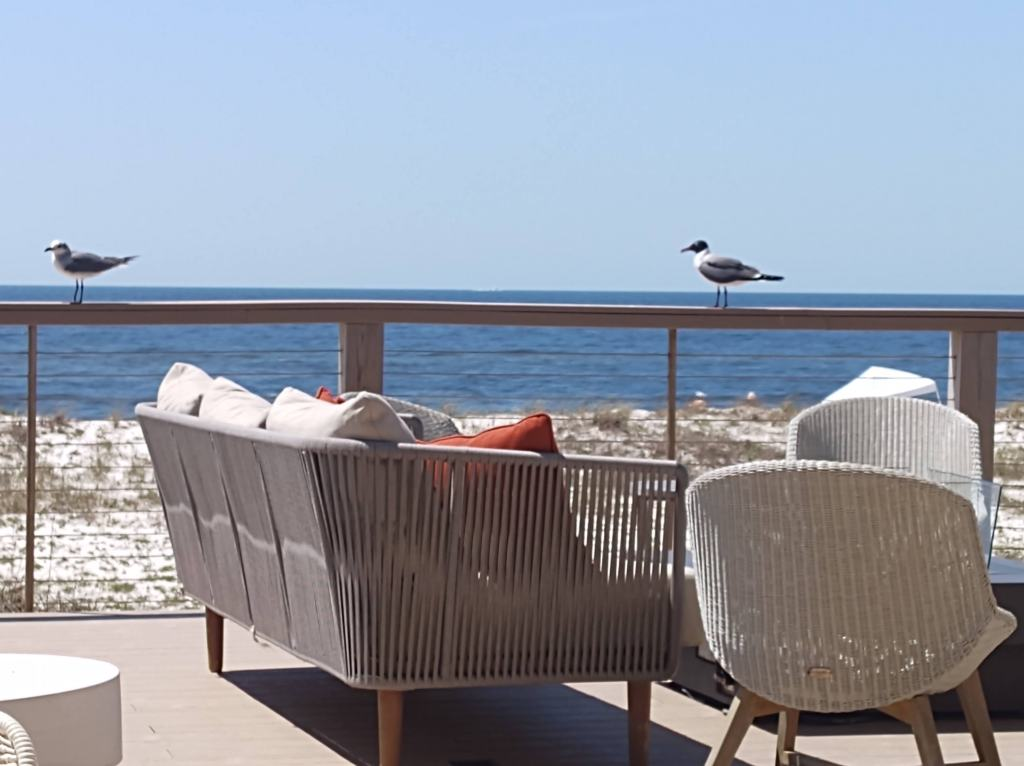 View of gulf with two seagulls on the railing.