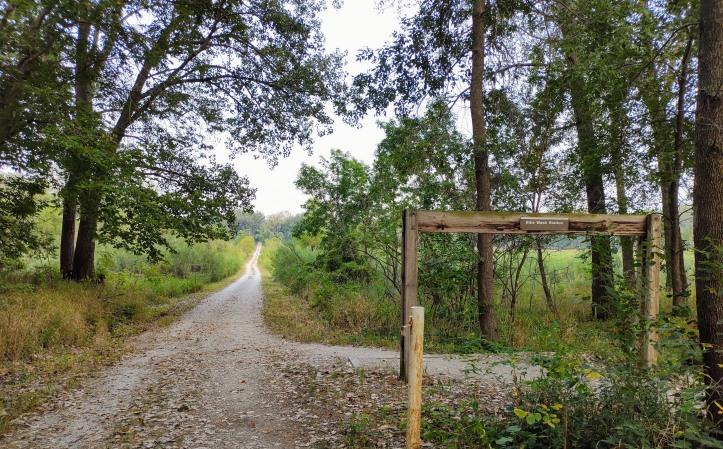 Mountain bike trail road.