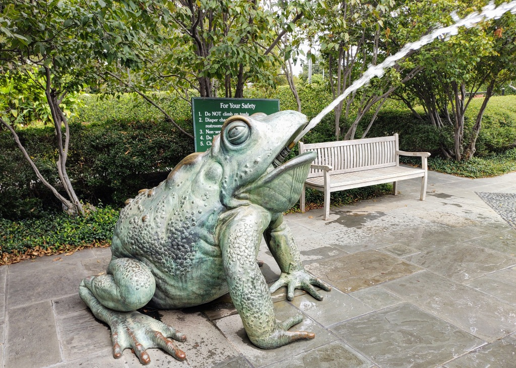 Frog statue spitting out water.